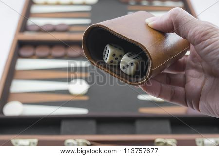 Playing Games Series - Rolling Backgammon Dice