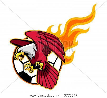 Flying Bald Eagle And Flaming Soccer Ball