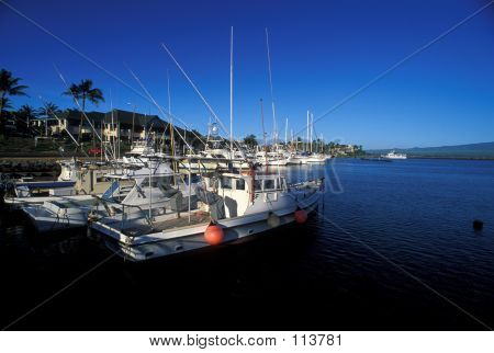 Harbor At Maui, Hawaii