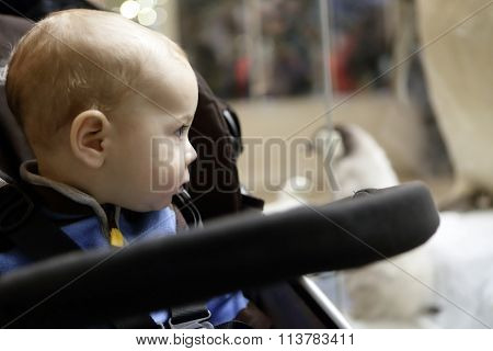 Baby On A Stroller