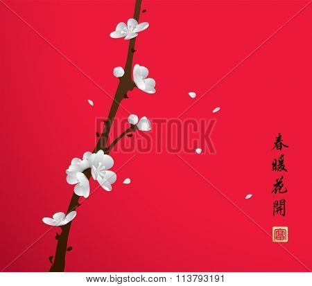 Chinese New Year. Plum blossom in spring. Translation: Flowers bloom during the warm spring.