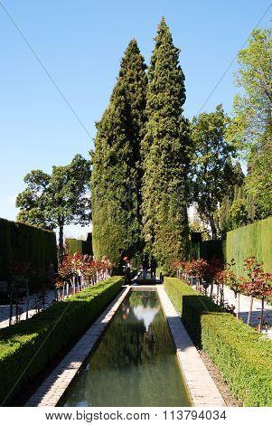 Alhambra Palace Gardens, Granada.