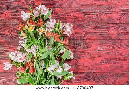Rustic Background With Flowers