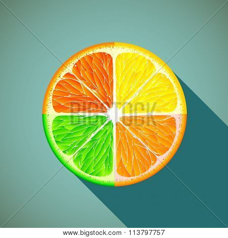 Icon Citrus. Stock Illustration.