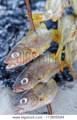 Cooking The Fishes