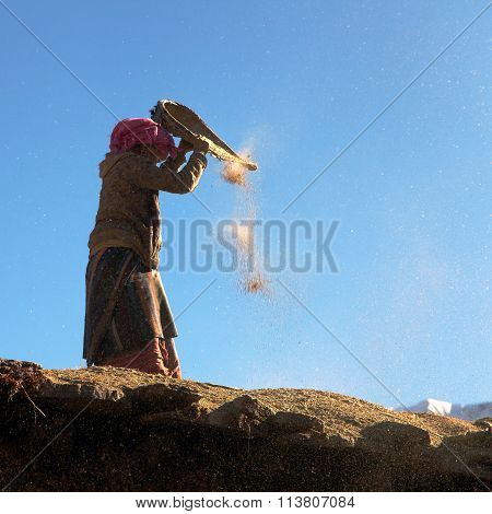 Nepalese Woman Cleaning Corn In Wind On Roof Of Building