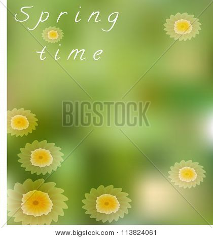 Spring card with camomiles