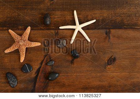starfish and rocks summer background