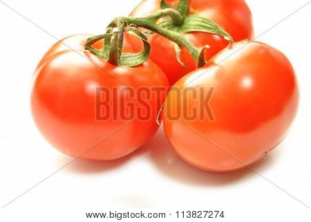 Perfect Red Tomatoes Isolated Over White