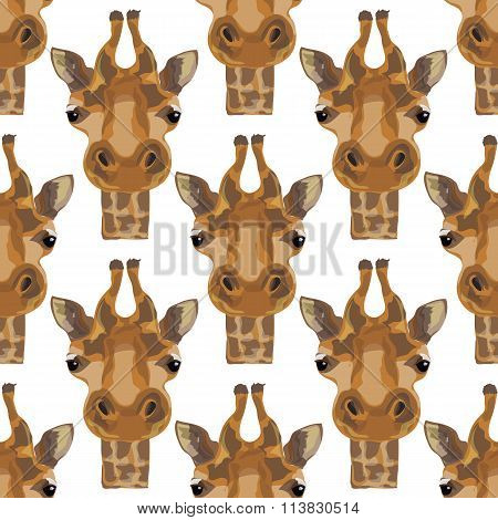 Illustration Of A Giraffe. The Head Of The Giraffes. Safari And Wild Animals. Wild Unspoiled Nature.