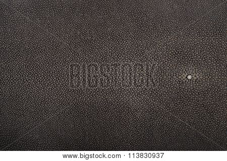 Stingray leather steel color