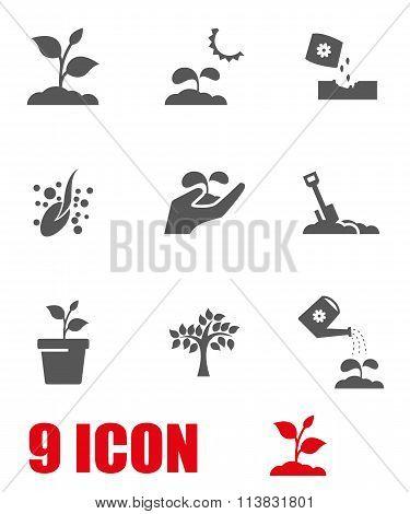 Vector Grey Growing Icon Set