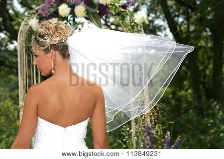 Rear view of a bride with veil