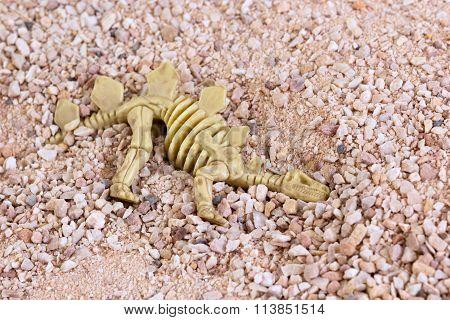Toy Dinosaur Skeleton