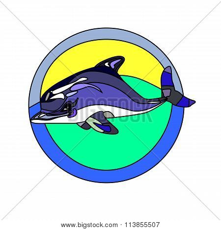 Dolphin's Silhouette