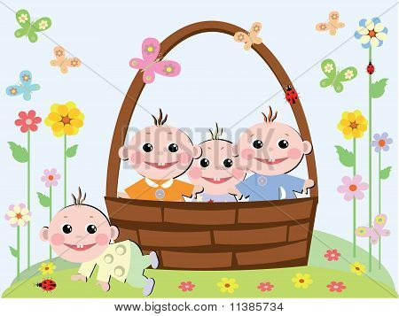 Babyes in the basket