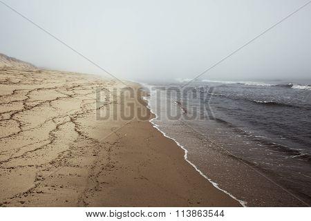 Beach on Cape Cod