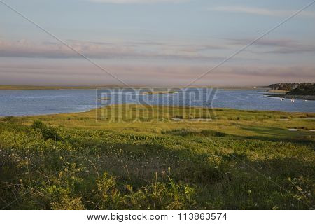 Landscape on Cape Cod