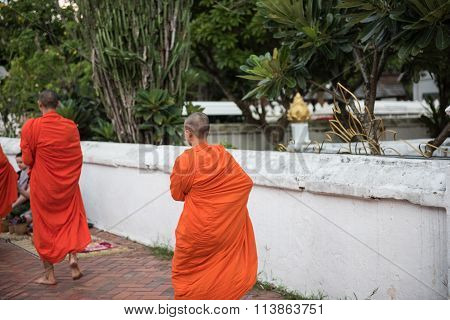 Monks Walking For Prayers