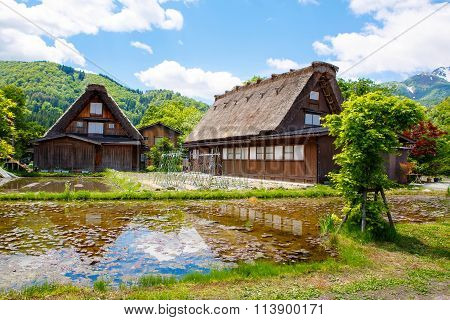 Historic Japanese village Shirakawa-go in summer