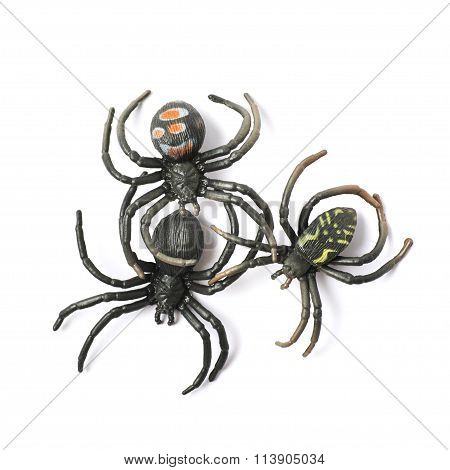 Rubber spider toy isolated