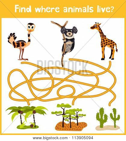 Fun And Colorful Puzzle Game For Children's Development Find Where A Monkey, A Giraffe And The A