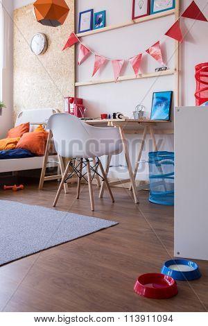 Cosy Furnished Boy Room