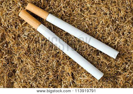 Cigarette On Tobacco Background