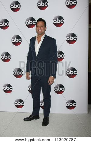 LOS ANGELES - JAN 9:  Josh Hopkins at the Disney ABC TV 2016 TCA Party at the The Langham Huntington Hotel on January 9, 2016 in Pasadena, CA