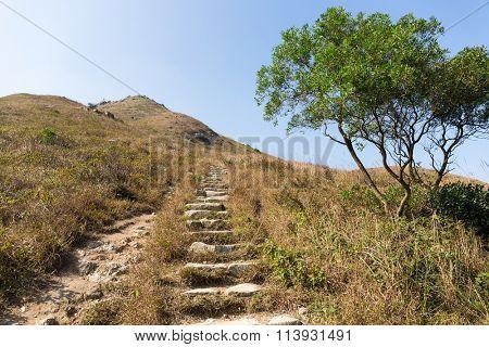 Autumn Lantau peak