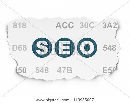 Web development concept: SEO on Torn Paper background