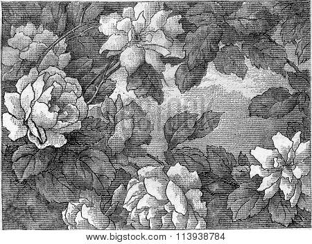 Flemish green fragment, late seventeenth century, vintage engraved illustration. Magasin Pittoresque 1880.