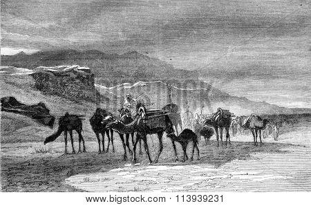 A Caravan to Cape Spartel, Morocco, Gibraltar, vintage engraved illustration. Magasin Pittoresque 1878.