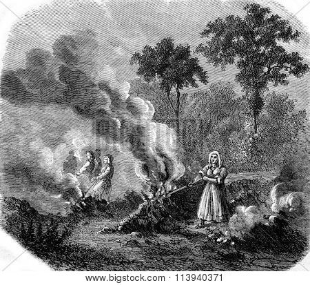 Land clearing, vintage engraved illustration. Magasin Pittoresque 1873.