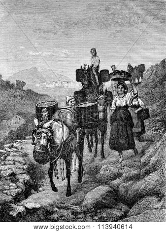 1872 Exhibition of Painting, The Harvest in Catalonia, by Girard, vintage engraved illustration. Magasin Pittoresque 1873.