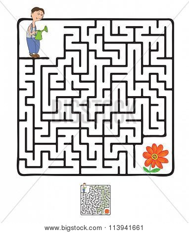 Maze, Labyrinth with Gardener and Plant.
