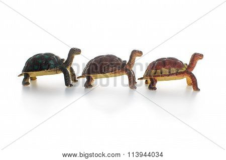 three toy tortoise