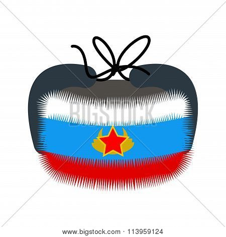 Ushanka. Traditional Winter Hat In Russia. Warm Hat In Color Of  Flag Of Russia. Tricolor Fur Headpi