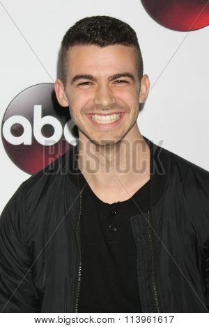 LOS ANGELES - JAN 9:  Joey Pollari at the Disney ABC TV 2016 TCA Party at the The Langham Huntington Hotel on January 9, 2016 in Pasadena, CA