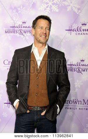 LOS ANGELES - JAN 8:  James Denton at the Hallmark Winter 2016 TCA Party at the Tournament House on January 8, 2016 in Pasadena, CA