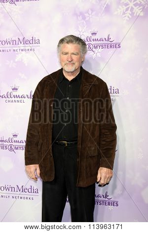 LOS ANGELES - JAN 8:  Treat Williams at the Hallmark Winter 2016 TCA Party at the Tournament House on January 8, 2016 in Pasadena, CA