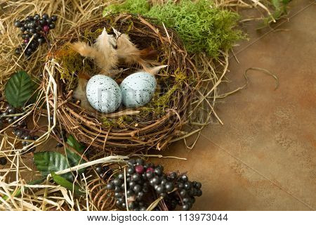 Border frame image made of berries, spring leaves and a bird's nest