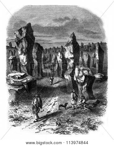 View taken in the field Carnac, Morbihan department, vintage engraved illustration. Magasin Pittoresque 1847.