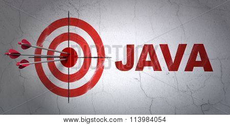 Software concept: target and Java on wall background