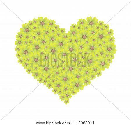 Yellow Yarrow Flowers in A Heart Shape