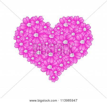 Pink Yarrow Flowers in A Heart Shape