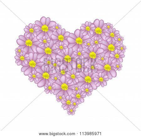 Purple Yarrow Flowers in A Heart Shape