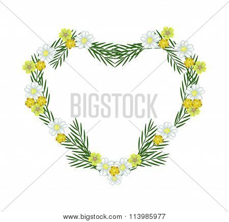 White and Yellow Yarrow Flowers in A Heart Shape