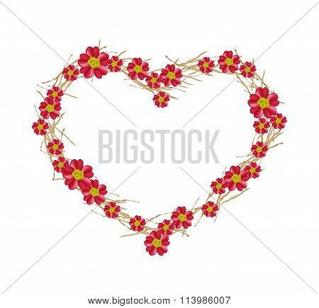 Red Yarrow Flowers Forming in A Heart Shape