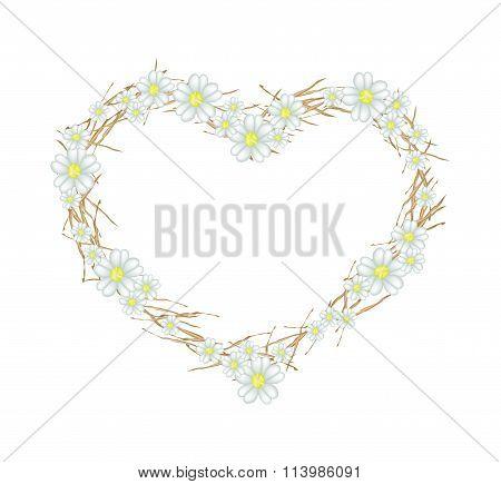 White Yarrow Flowers in Heart Shape Frame